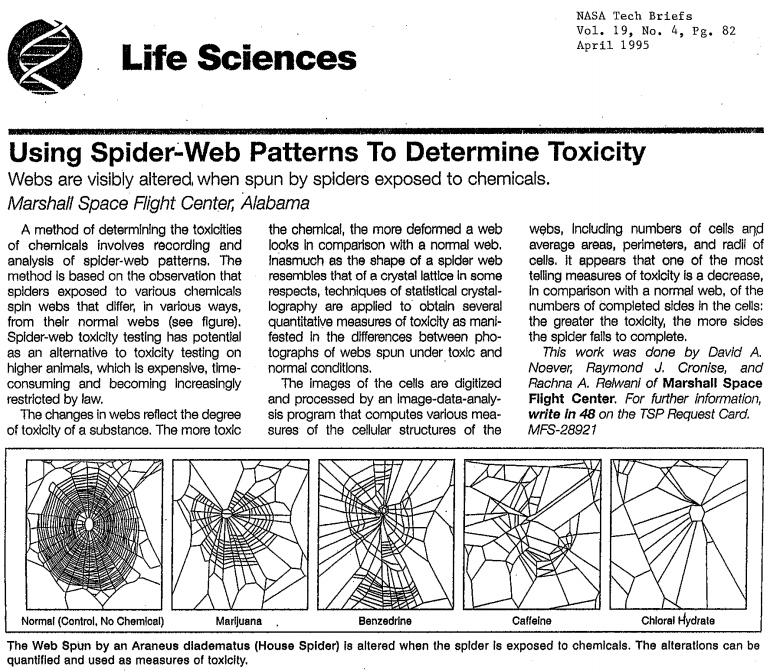 Jak zachowają się pająki po różnych narkotykach? – Crazy Nauka