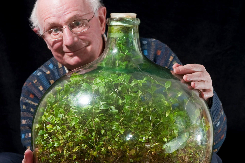 Ogród W Zamkniętej Butli To Możliwe Crazy Nauka