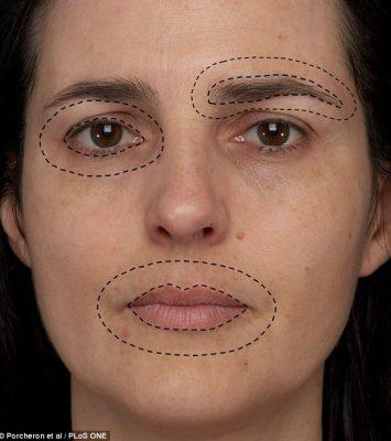 twarz rys