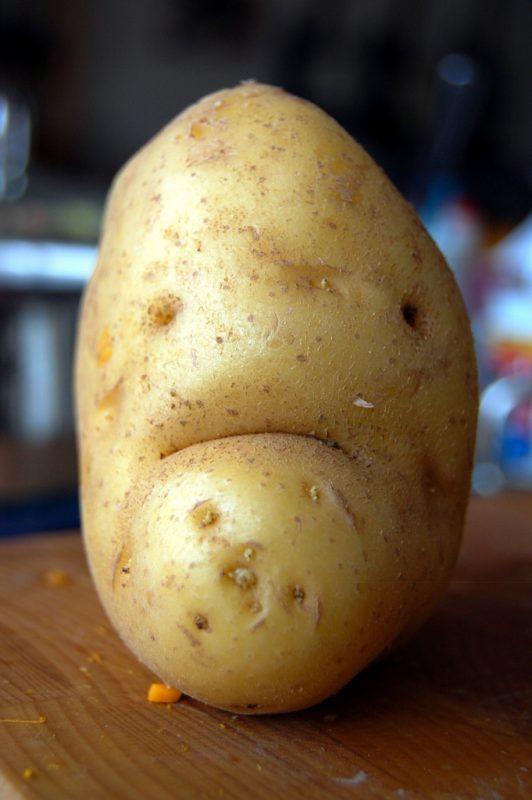 Czy surowe ziemniaki wuywołują gorączkę? Fot. banger1977/Flickr