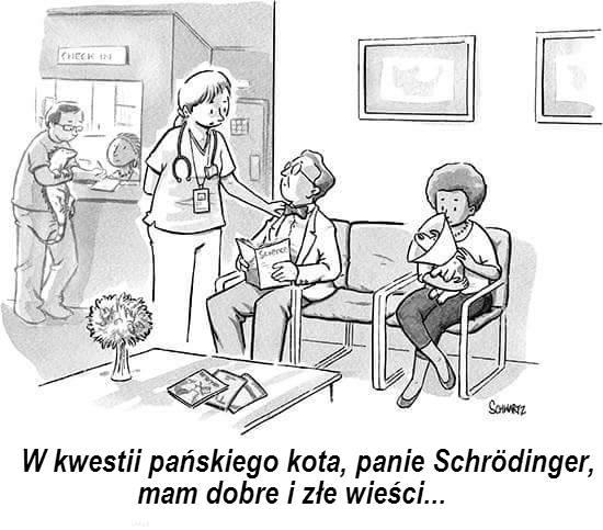 Kot Schrödingera Rys. The New Yorker Cartoons