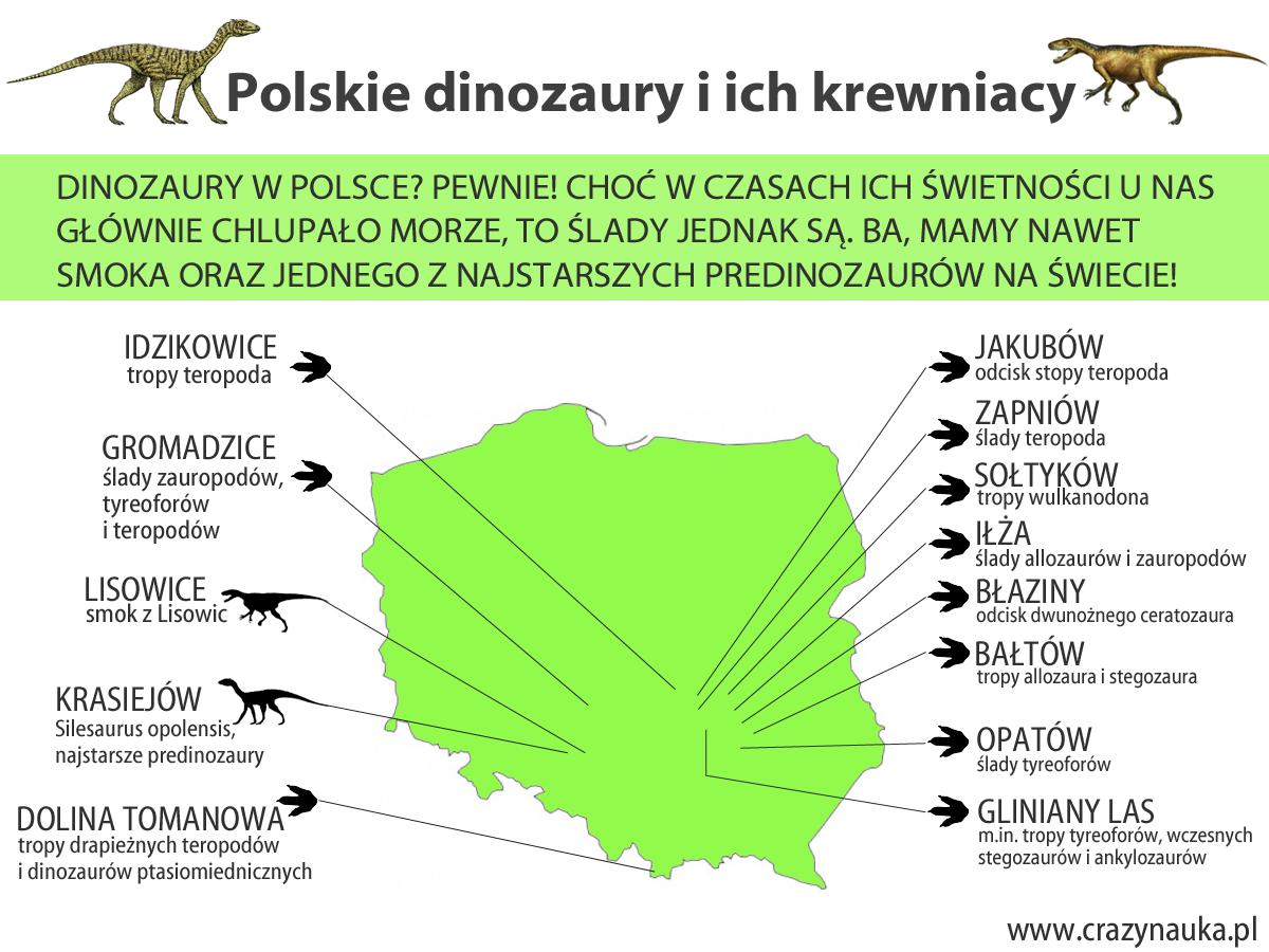 Gdzie w Polsce znaleziono ślady dinozaurów? Mapa.