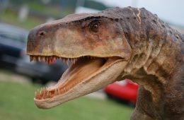 Smok z Lisowic (gatunek smok wawelski) - krewniak dinozaura odkopany na Śląsku