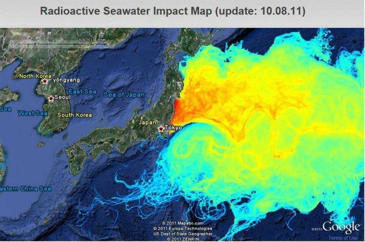 symulację rozprzestrzeniania się radioaktywności po Pacyfiku. Źródło: Vincent Rossi, Edifici Instituts Universitaris de Recerca