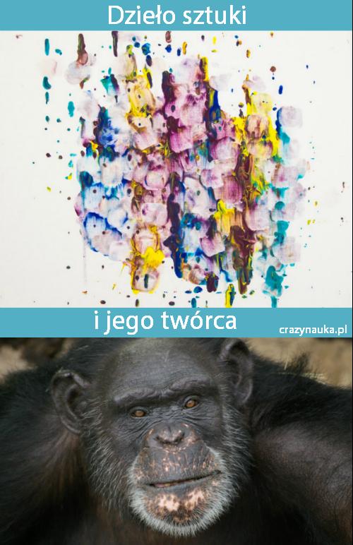 Szympans Brent maluje obrazy językiem. Fot. Meredith Lee/Humane Society of the United States