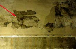 Nieznane malowidło Leonarda da Vinci w Zamku Sforzów