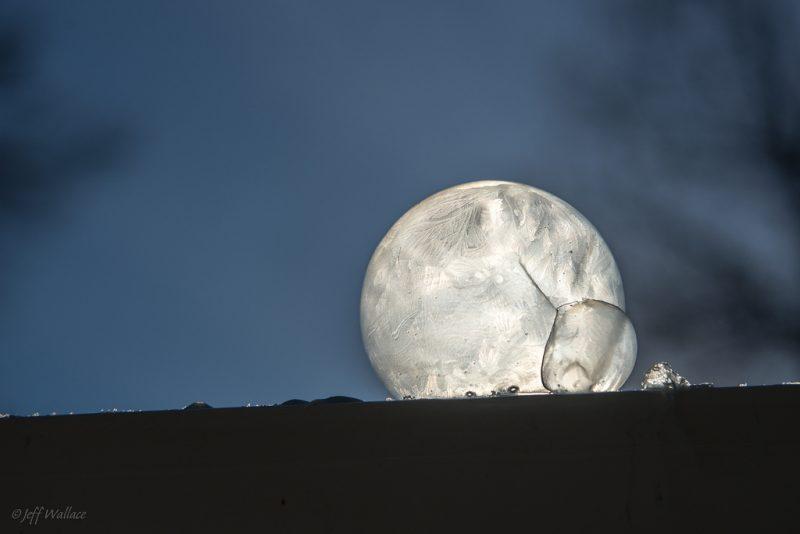 Bańka mrożona. Fot. Jeff Wallace/Flickr