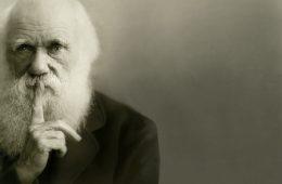 """Czy ewolucja to """"tylko"""" teoria? Nie!"""