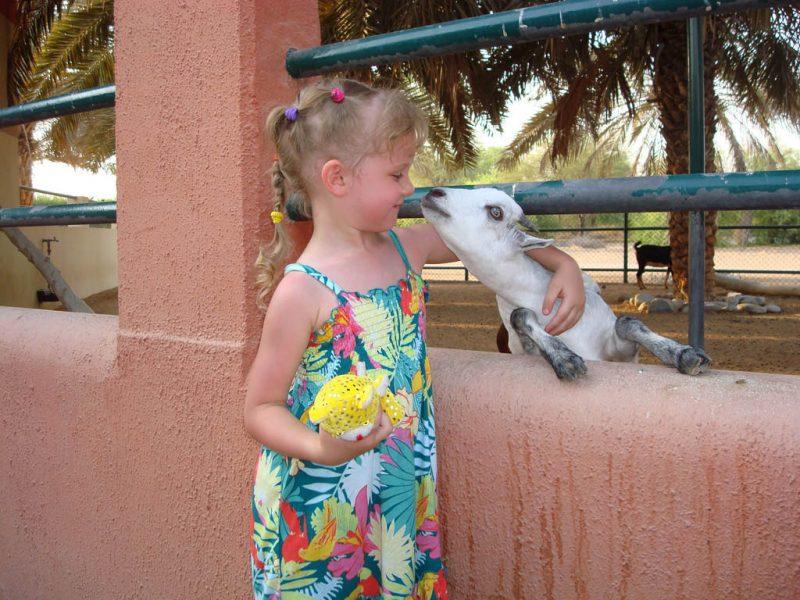 Wizyta w zoo - to się na długo zapamiętuje. Fot. Andrey