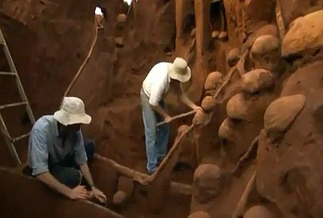 Gigantyczne mrowisko odkryte w Brazylii. Fot. Youtube