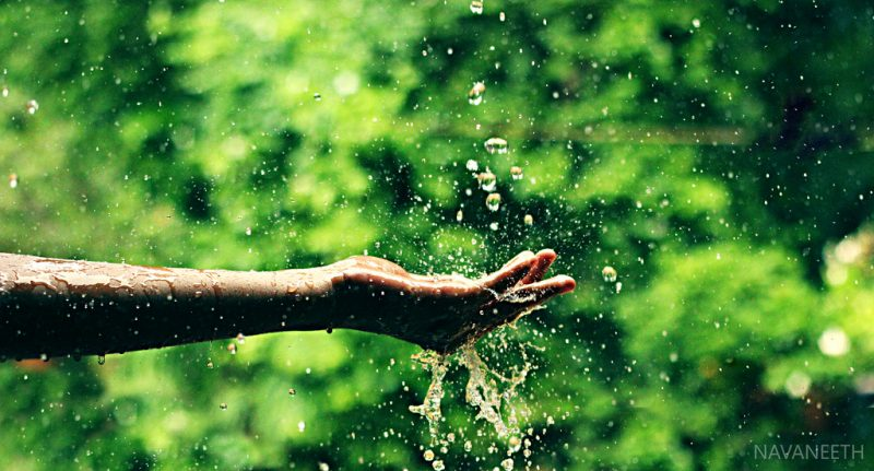 Za zapachem deszczu stoją żyjące w ziemi bakterie. Fot. Navaneeth Ashok/Flickr