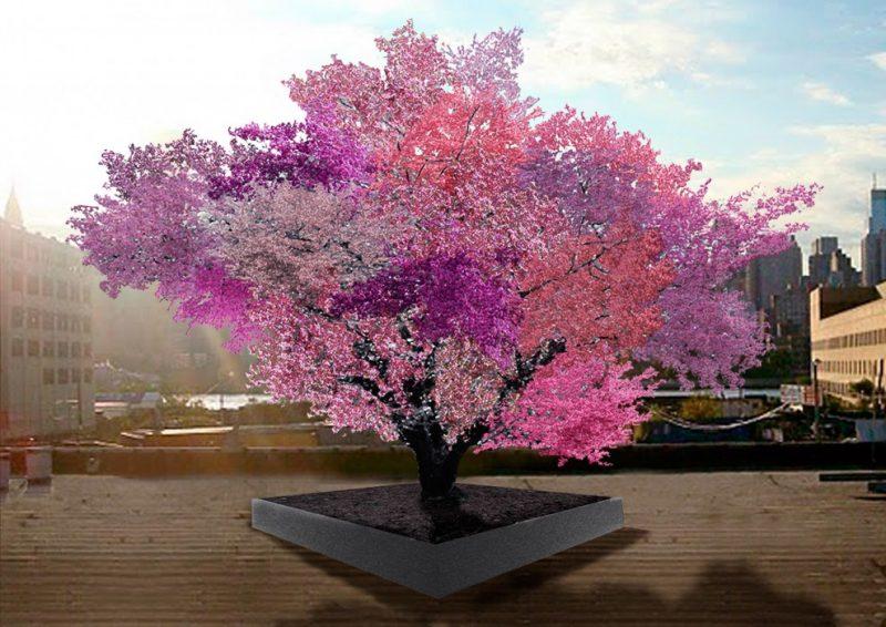 Drzewo 40 Owoców. Fot. Sam Van Aken