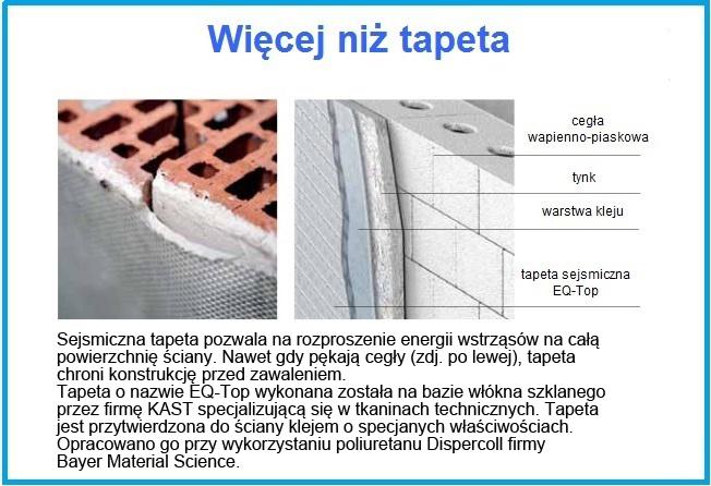 tapeta_sejsmicznaPL