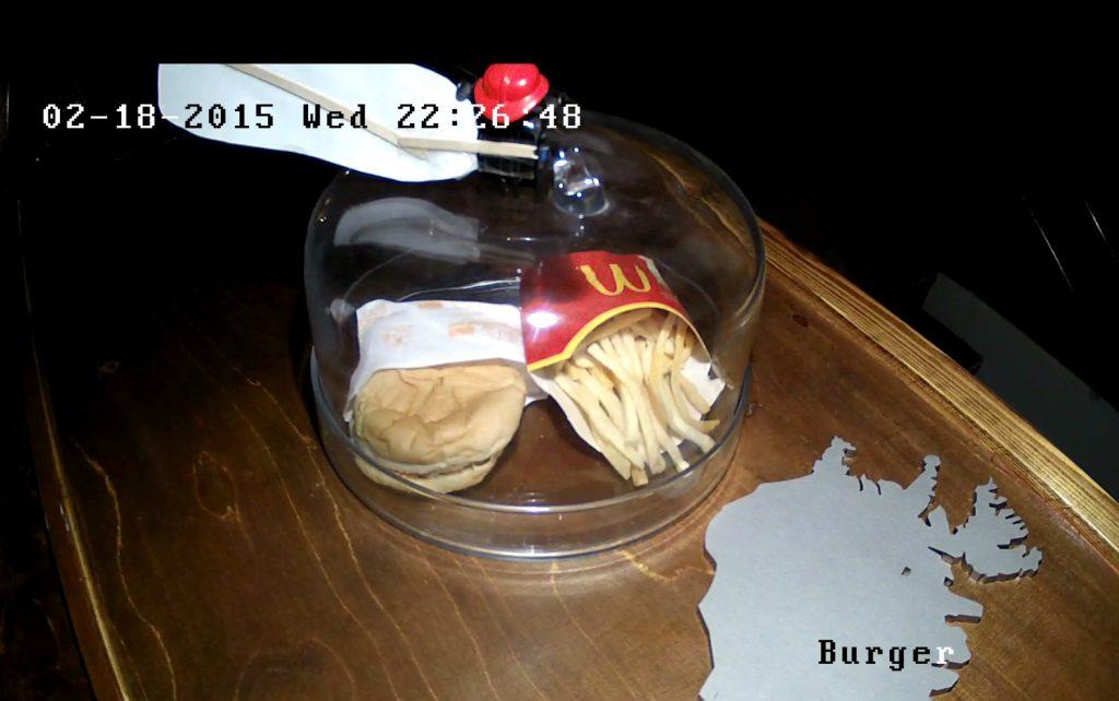 Islandzki hamburger z 2009 roku