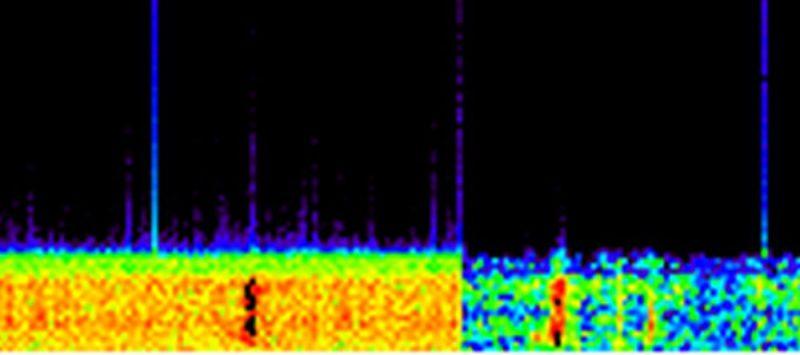 Fragment spektrogramu dźwięku Bloop