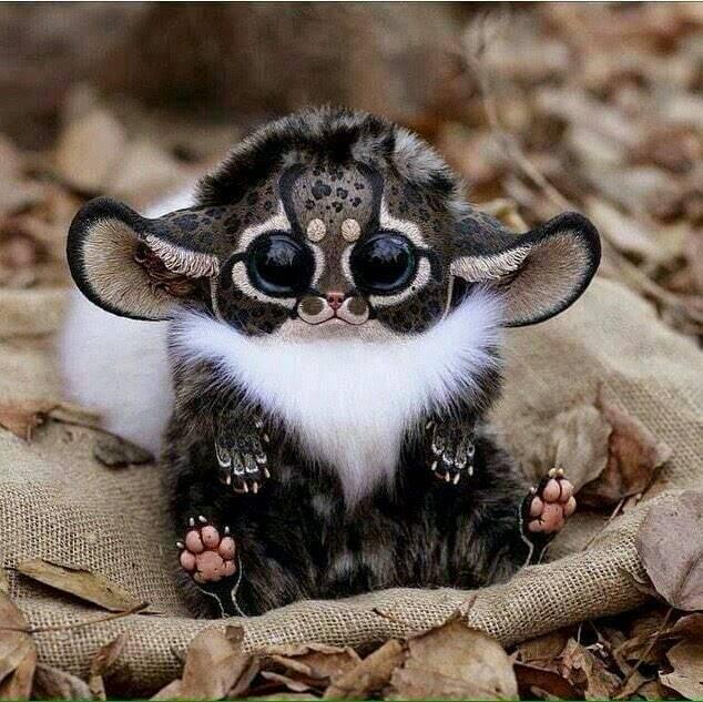 """""""Małpka z Madagaskaru"""" czyli maskotka z DeviantArt. Fot. Santani"""