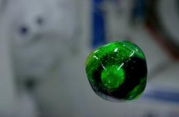 Woda w mikrograwitacji. Fot. NASA/YouTube