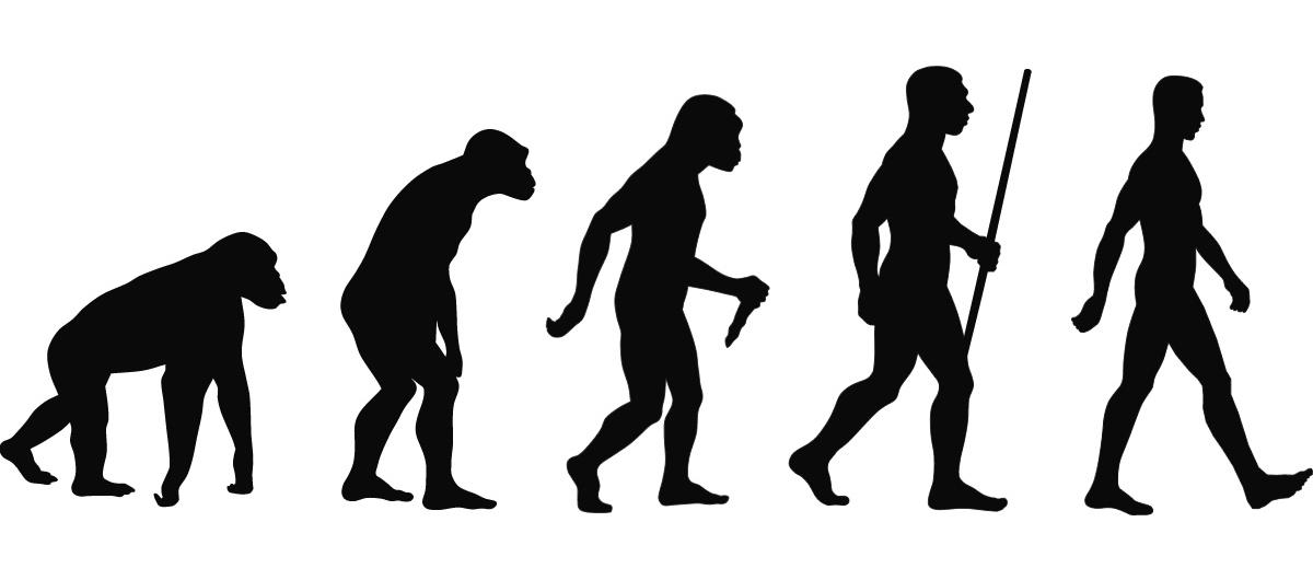 Datowanie względne ewolucji