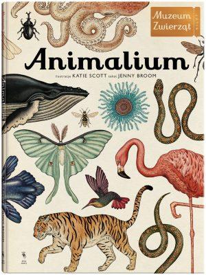 """""""Animalium"""""""