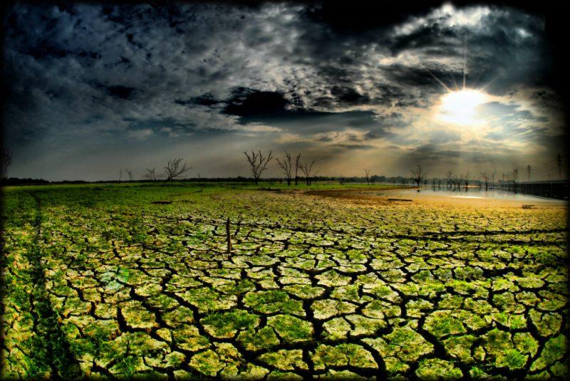 Jezioro Ray Hubbard w Teksasie podczas suszy. Fot. Terry Shuck/Flickr