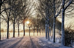 Przesilenie zimowe – dzień, w którym zatrzymało sięSłońce