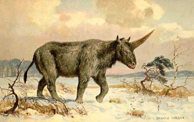 """""""Syberyjski jednorożec"""" - obraz Heinricha Hardera. Źródło: Wikimedia"""