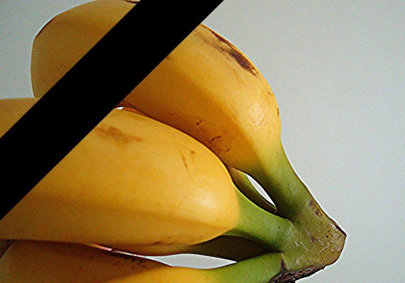Koniec banana Fot. MAURO CATEB