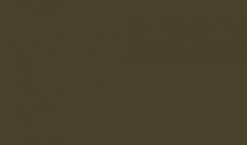 Najbrzydszy kolor świata - Pantone 448 C