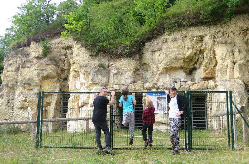 Ściana kamieniomu w Bochotnicy, na której widać moment zagłady dinozaurów. Fot. Crazy Nauka