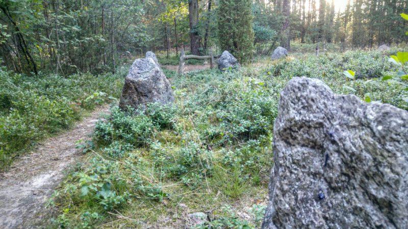 Kamienne kręgi w Odrach. Fot. Crazy Nauka