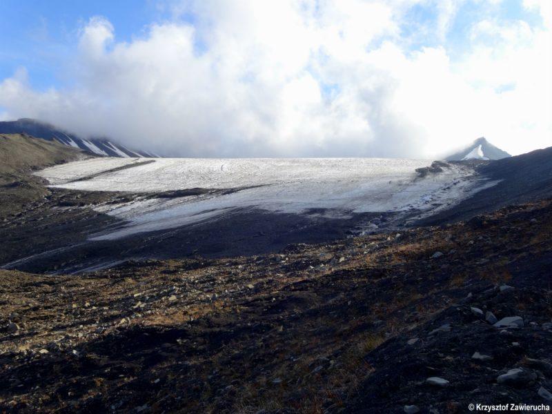 2.Lodowiec Lars na Spitsbergenie, przykład szybko topniejącego ekosystemu lodowego. Fot. Krzysztof Zawierucha