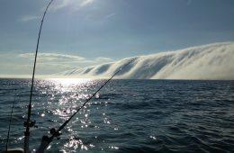 Chmura pożera jezioro Michigan – co musi się stać, by powstała tak dziwna mgła?