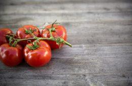 Pomidory trzymane w lodówce tracą smak – już wiadomo dlaczego