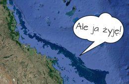 Wielka Rafa Koralowa żyje! Fot. Google Maps