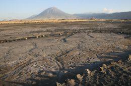 Odkryto mnóstwo śladów ludzkich stóp sprzed 19 tys. lat