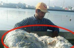 Trzech rybaków znalazło wymiociny wieloryba warte 2,8 mln dolarów