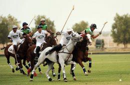 Sześć klonów koni wygrywa mecz polo