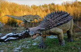 Dotknąć prawdziwych tropów dinozaurów