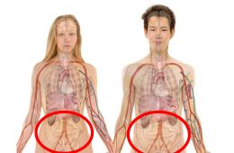 Mamy w ciele nowy organ