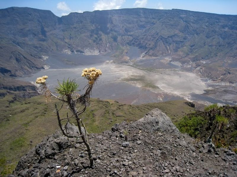 mount tambora and the year without a A rather fanciful drawing of the eruption of mount tambora, which caused the year without a summer (wikimedia commons photo) we've been having some strange weather this spring, cold and wet.