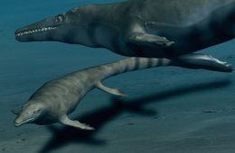 Bogate życie w Antarktyce wymarło z tego samego powodu co dinozaury