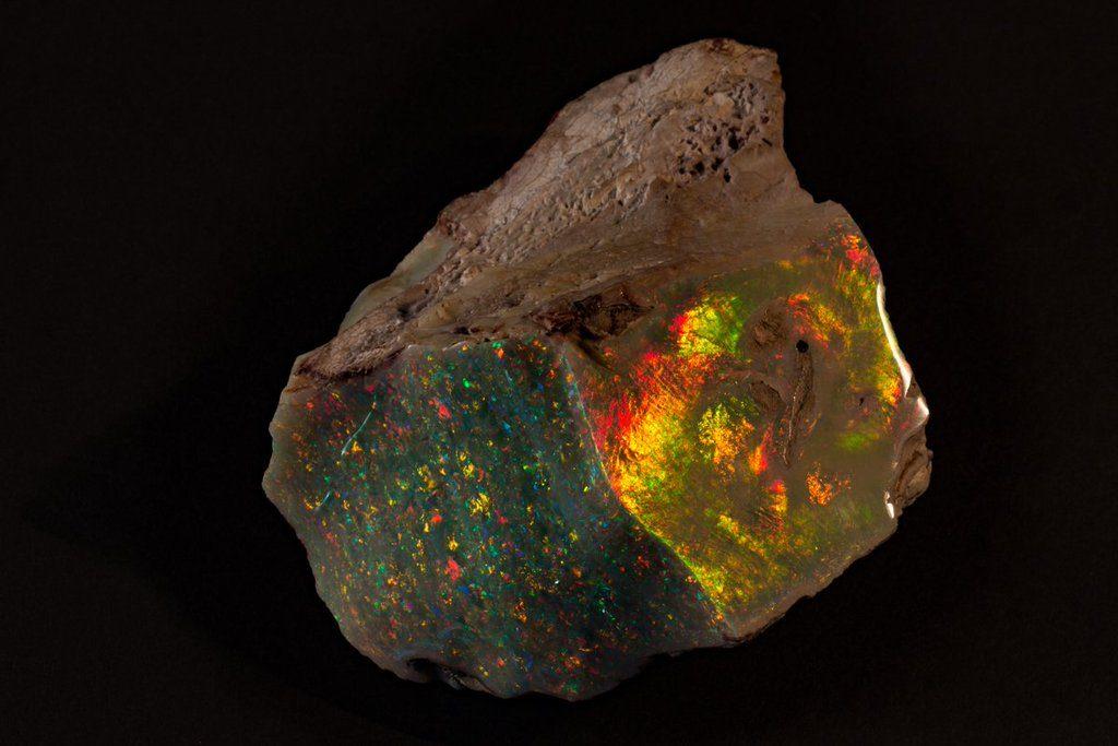 """Opal """"Ogień Australii"""" Fot. South Australian Museum"""