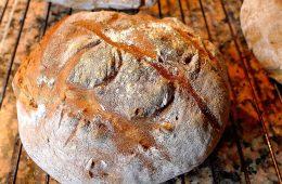 Nietolerancję glutenu może wywoływać… wirus