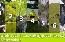 7 pięknych i zaskakujących rzeczy w Bieszczadach