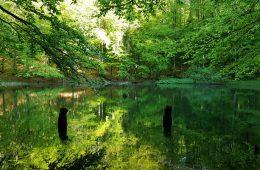 Bieszczady: jak runęła góra i powstały cud-jeziorka