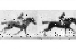 Naukowcy zapisali animację w DNA żywej bakterii. I to nie jest tylko zabawa!