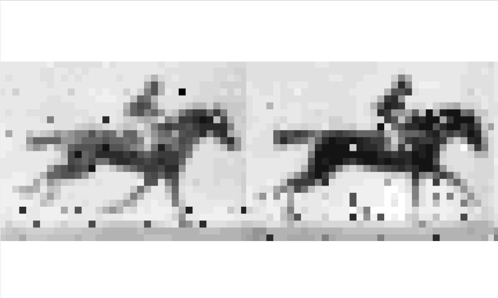 Animacja zapisana w bakterii. Fot. Seth L. Shipman et al. (2017)