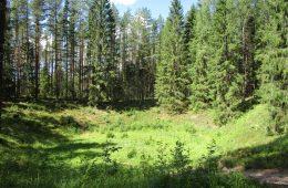 """Polka zbadała """"diabelskie"""" kratery w Estonii – wiadomo już, co rąbnęło w ziemię"""