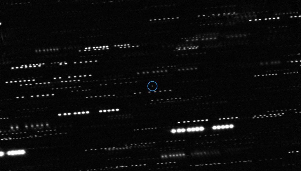 Asteroida na tle gwiazd - widok, jaki pozwolił odkryć 1I/2017 U1. Fot. ESO/K. Meech et al.