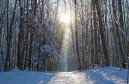 Przesilenie zimowe 21 grudnia – od jutra dni będą coraz dłuższe!
